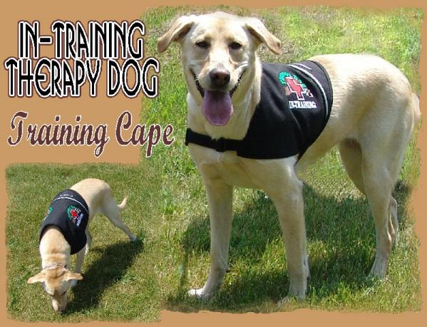 therapy dog training for puppies