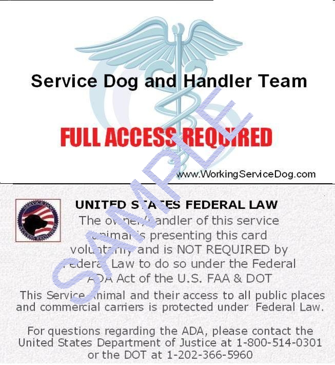 United States Federal Law Service Dog